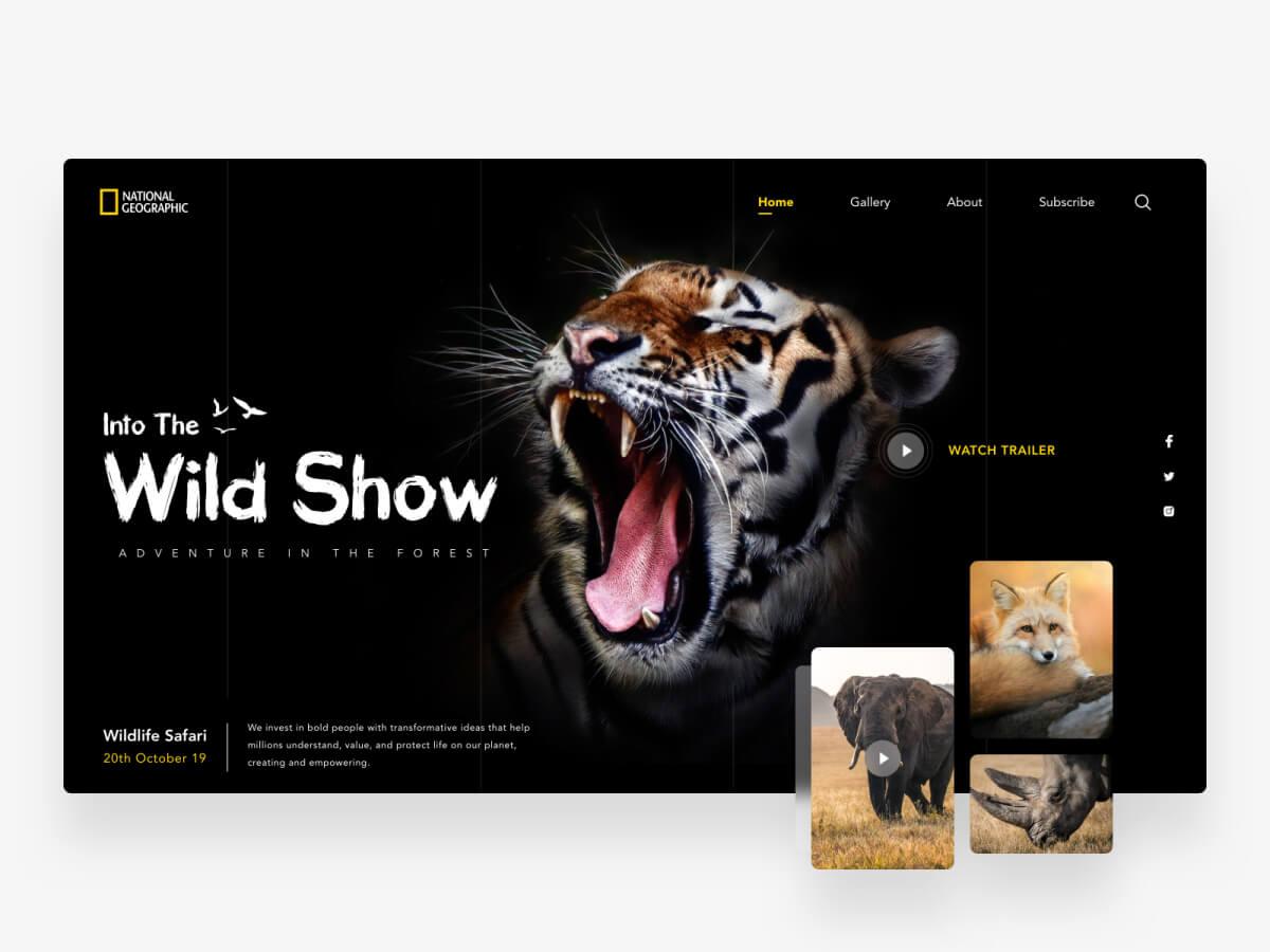 NatGeo Website Concept for Sketch